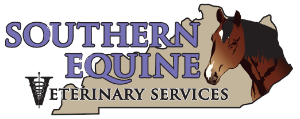 Southern Equine Veterinary Services